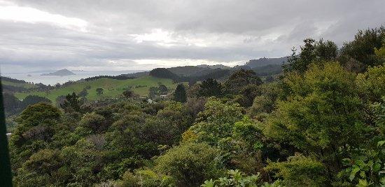 Coromandel, Nieuw-Zeeland: 20171022_171855_large.jpg