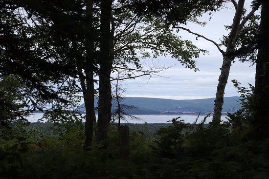 Broad Cove Mountain Trail