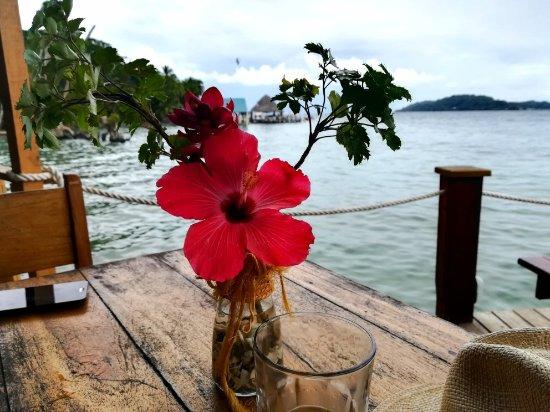 Carenero Island, ปานามา: IMG_20171104_123910_large.jpg