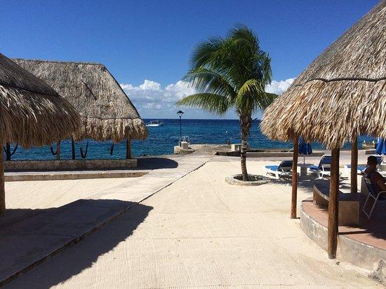 Scuba Club Cozumel : Shore dive site