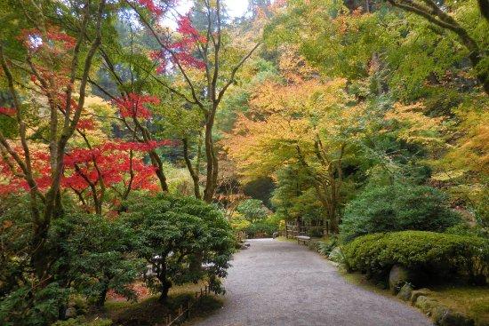 Portland Japanese Garden Early November Picture Of Portland Japanese Garden Portland