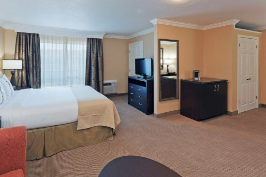 Holiday Inn San Mateo-San Francisco SFO: King Bed Guest Room