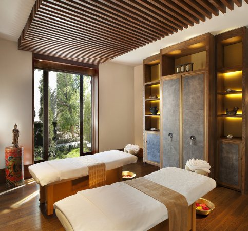 St. Regis Lhasa Resort: Iridium Spa