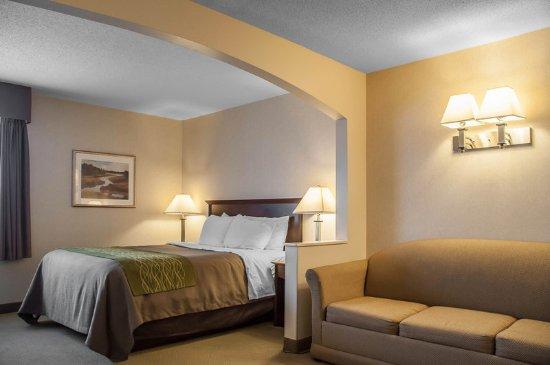 Comfort inn suites barrie essa road canada voir for Media room guest bedroom