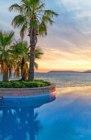 Podstrana, Croatia: Outdoor pool detail