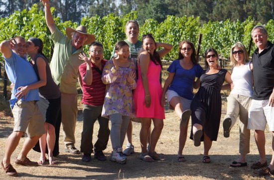 Napa or Sonoma Wine-Tasting Small-Group Tour with Lunch