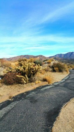 Mountain Center, CA: Cahuilla Tewanet Scenic Overlook