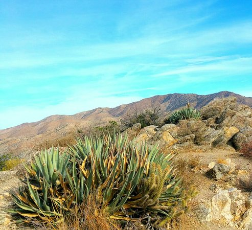 Mountain Center, Καλιφόρνια: Cahuilla Tewanet Scenic Overlook