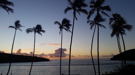 Waikiki Shore: so beautiful sunset!!!!!