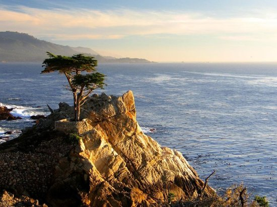 Holiday Inn Express Hotel & Suites - Marina: Pebble Beach 17 mile Drive-Just down the road