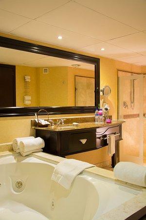 Crowne Plaza Hotel de Mexico: Guest Bathroom