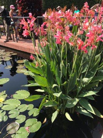 Chicago Botanic Garden Glencoe All You Need To Know Before You Go With Photos Tripadvisor