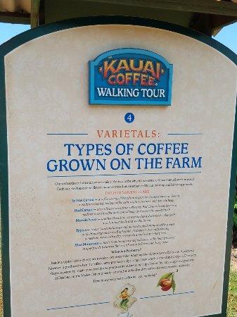 Kalaheo, Χαβάη: 20170915_113816_large.jpg