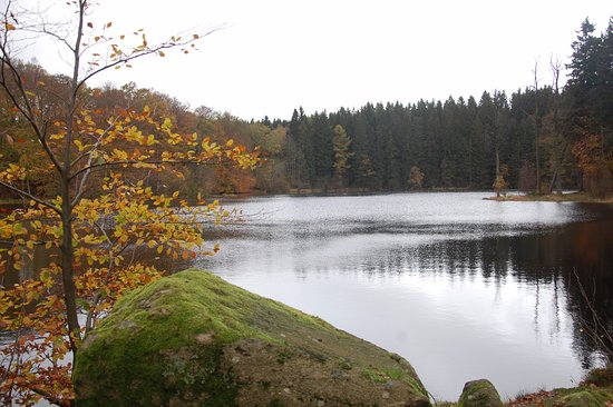 Kagerod, Suecia: sø tæt på vandrehjemmet om efteråret