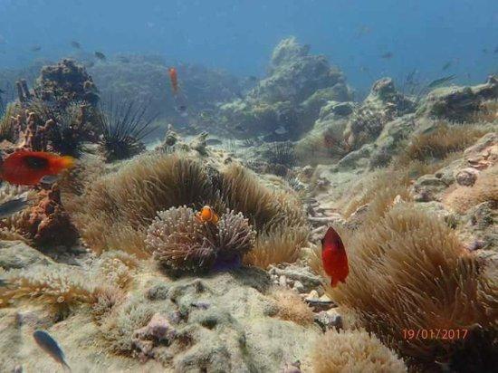 Myeik (Mergui) Archipelago