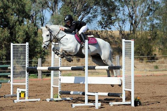 Gold Coast Equestrian Centre