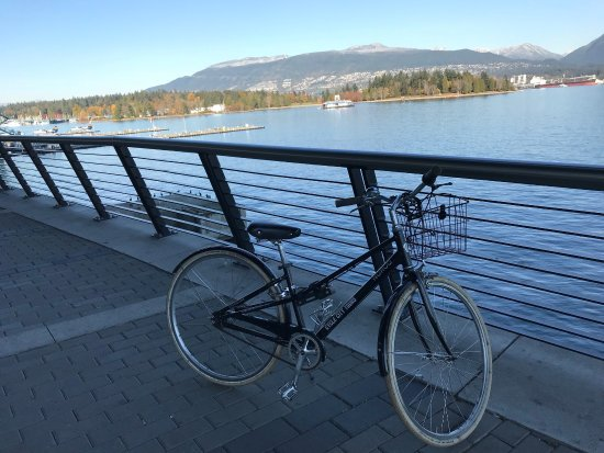 Cycle City Tours and Bike Rentals: photo1.jpg