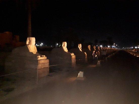 Avenue of Sphinxes: 20171106_184057_large.jpg