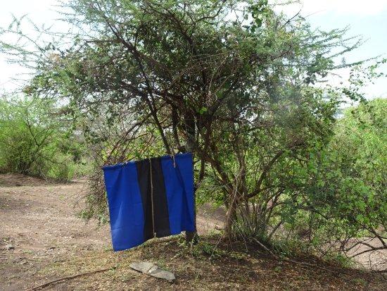 Tarangire National Park, Tanzanie : Tsetsefliegenfalle