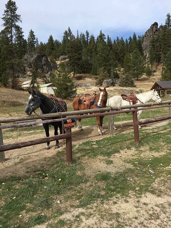 Lolo, MT: Grandson Scott just shy of three took a 30-min trail ride in most capable hands with alert, inte