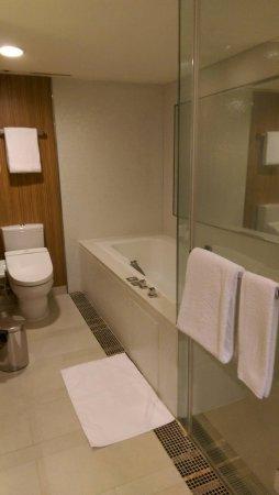 The Landis Taichung : 淋浴及浴缸