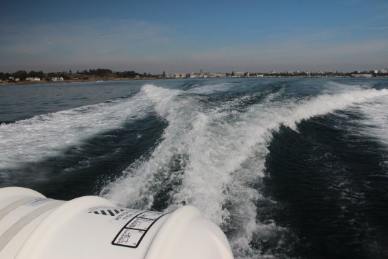 SpringTide Whale Watching & Charters: Wake from powerful motors