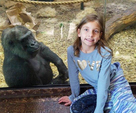 Louisville Zoo: photo0.jpg
