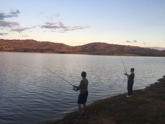 Lake Hume Tourist Park: terrific fishing off the shore of the beach...redfin everywhere...