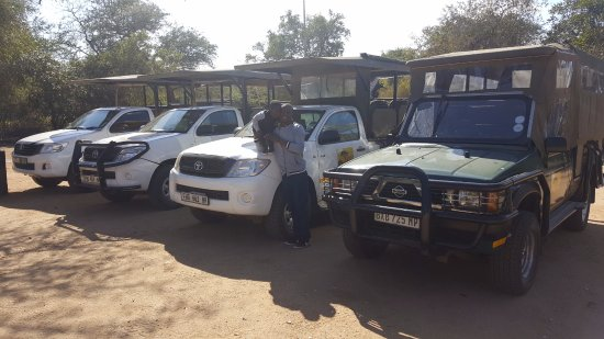 Open Safari vehicles - Picture of Humulani Tours & Safaris, Louw's