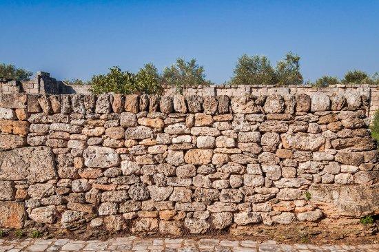 Masseria Bosco: Забор