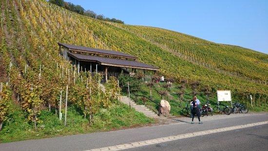 Brauneberg, Germany: Römische Kelteranlage
