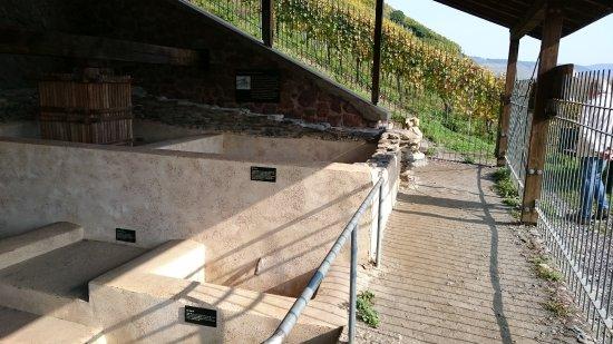Roman Wine Press: Römische Kelteranlage