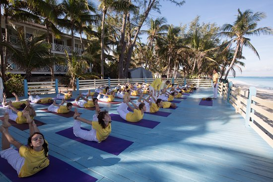 Sivananda Ashram Yoga Retreat: TTC on the Beach Platform