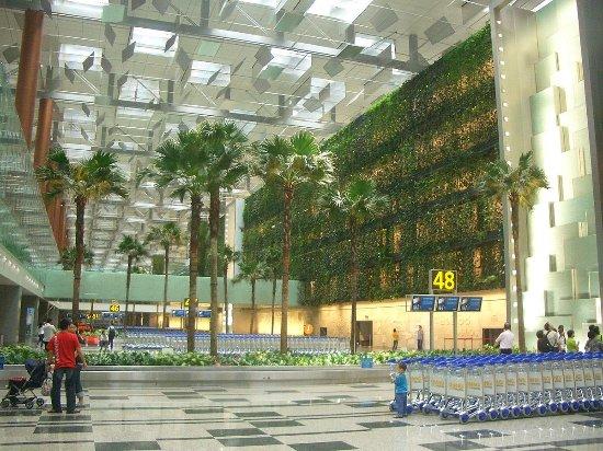 DFS新加坡樟宜机场店