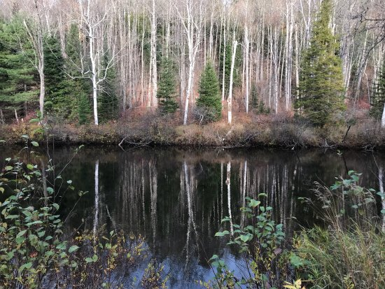 Bancroft, Canada: Pictures taken in Late fall
