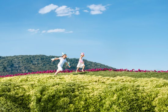 Hilton Dalaman Sarigerme Resort & Spa: Discover the beauty of being a child