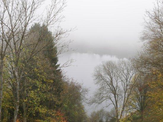 Schalkenmehren, Deutschland: bei Nebel