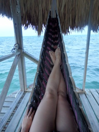 Barefoot Beach Belize: Hammocks!