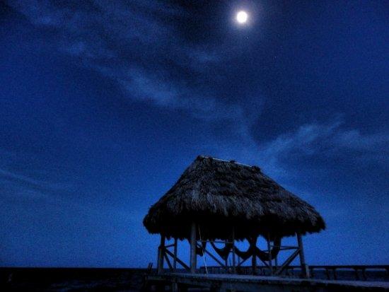 Barefoot Beach Belize: View of Hammocks from hotel proerty