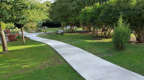 Chelmsford, UK: New pathway to Marquee and Common room. Much better for wheelchair users & those high heels.