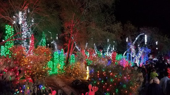 Ethel M Chocolates Factory and Cactus Garden: 20171107_183716_large.jpg