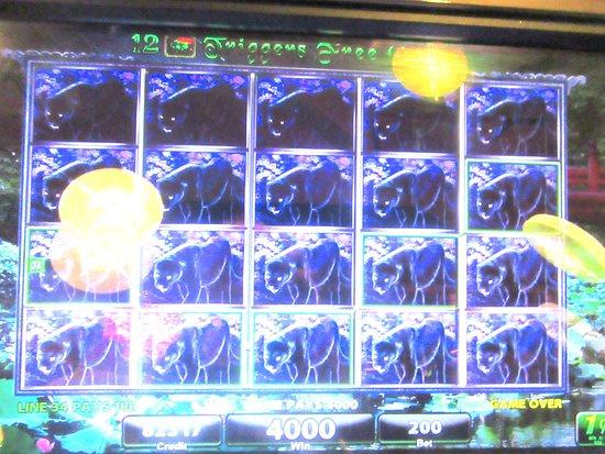 lauberge casino free night