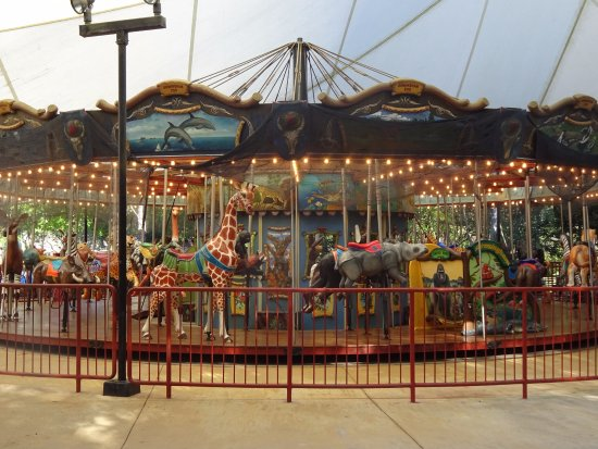 Birmingham Zoo: The carousel was very pretty but not worth the ride