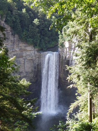 Trumansburg, NY: view of the waterfall