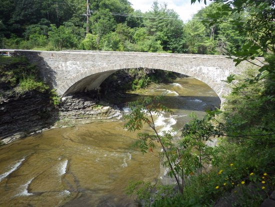 Trumansburg, NY: view of the bridge if you hike to the top