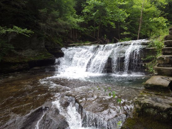 Robert Treman State Park: waterfall during the hike