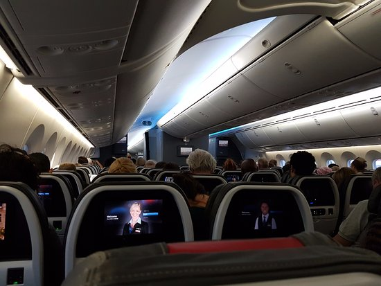 Interior American Airlines 787 - Picture of American