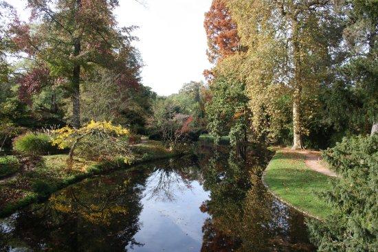 Chatenay-Malabry, Frankrike: Les Arbres Remarquables et le plan d'eau