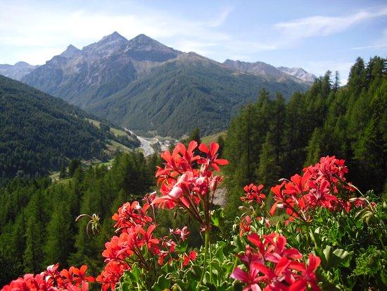 Alleve, Италия: Vista da Allevè della Val Troncea