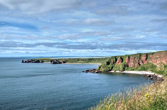 Arbroath to Auchmithie Coastal Path: looking over to the arbroath side of seaton cliffs